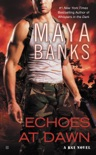 Echoes at Dawn book summary, reviews and download