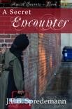 A Secret Encounter (Amish Secrets - Book 2) book summary, reviews and downlod