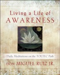 Living a Life of Awareness book summary, reviews and downlod