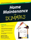Home Maintenance For Dummies book summary, reviews and download