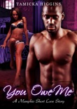 You Owe Me: A Memphis Short Love Story book summary, reviews and download