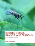 Robbers, Horses, Damsels, and Dragons book summary, reviews and download