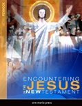 Encountering Jesus in the New Testament text book summary, reviews and download