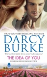 The Idea of You book summary, reviews and downlod