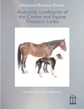 Anatomic Landmarks of the Canine and Equine Thoracic Limbs book summary, reviews and download
