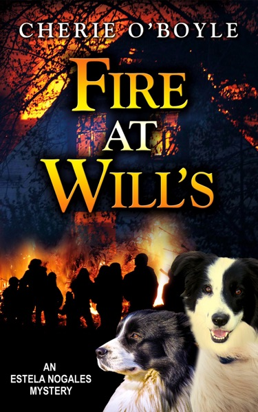 Fire at Will's by Cherie O'Boyle Book Summary, Reviews and E-Book Download