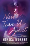 Never Tear Us Apart book summary, reviews and downlod