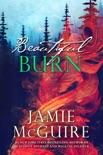 Beautiful Burn: A Novel book summary, reviews and downlod
