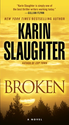 Broken E-Book Download