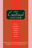 The Emotional Affair book summary, reviews and download