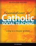 Foundations of Catholic Social Teaching [2015] text book summary, reviews and download