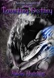 Taunting Destiny e-book