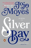 Silver Bay book summary, reviews and download