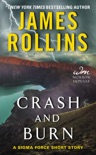 Crash and Burn book summary, reviews and downlod