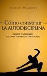 Cómo construir la autodisciplina: Resiste tentaciones y alcanza tus metas a largo plazo book summary, reviews and downlod